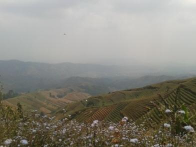 Panorama Ladang Berundak Argapura