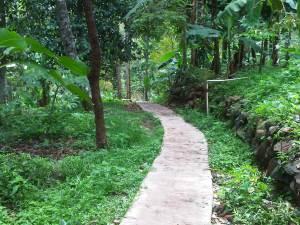 Jalan setapak menuju Curug Baligo yang sudah di semen.
