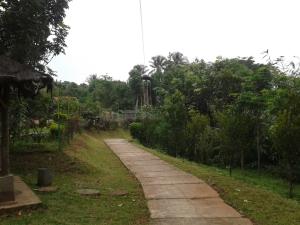 Bukit Alam Hejo 5