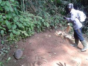 Bapak Heri (juru pelihara situs) tengah membersihkan di situs 'Batu Dewi Citra'