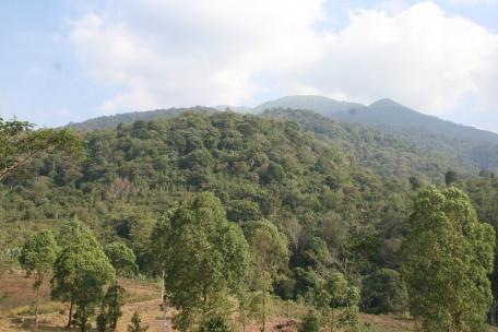 Lereng Utara Gunung Ciremai di Sadarehe